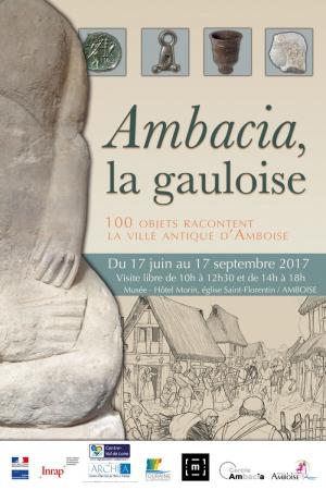 Ambacia La Gauloise Musee Hotel Morin Amboise Journees Du